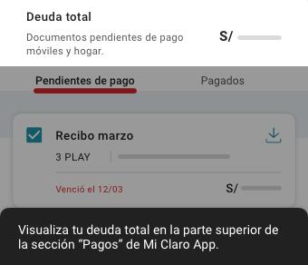 FlujoRecibos_ConocerDeuda_v2.png.png