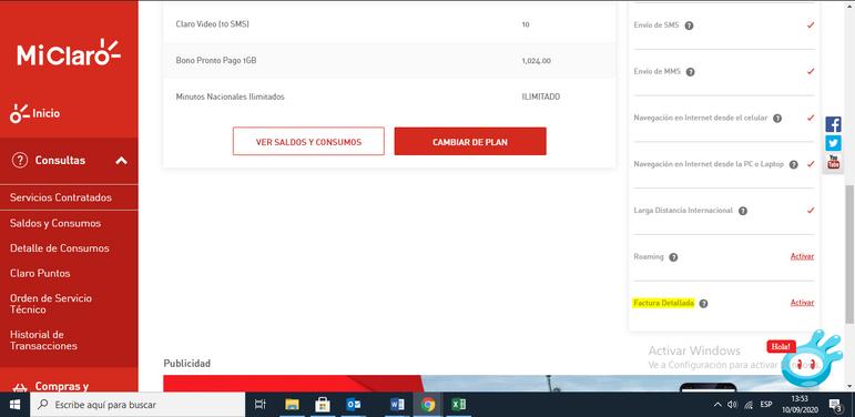 factura detalladap.PNG